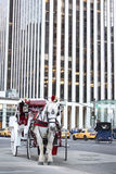 HästRickshaw i New York City Arkivfoton