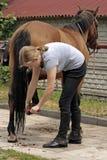 hästridning Royaltyfria Foton