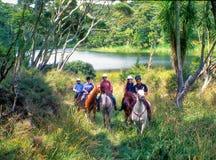 Hästridning i buske arkivfoto