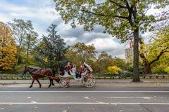 Hästridning i Central Park New York City arkivfoto