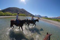 Hästridning i Glenorchy, Nya Zeeland arkivbild