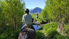 Hästridning i Glenorchy, Nya Zeeland royaltyfri bild