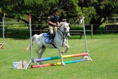 Hästridningliten flicka Fotografering för Bildbyråer