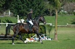 hästridningsport Arkivfoto