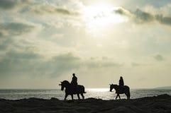 Hästritt Huelva Spanien Royaltyfria Foton