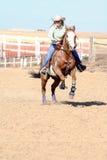 hästrunning Arkivfoton