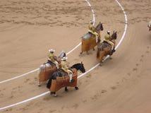 hästryggen ståtar piccadors Arkivfoto