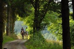 Hästryggridning Royaltyfria Foton