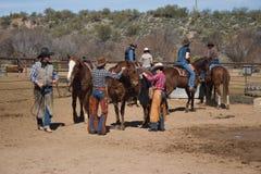 Hästryggridning i öknen Royaltyfri Foto