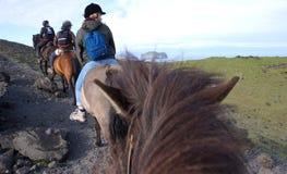 Hästryggridning i Island arkivfoton