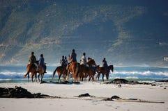 Hästryttare på stranden med berg i Sydafrika, Cape Town royaltyfria foton