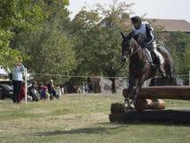 Hästryttare som hoppar över en barriär Royaltyfri Fotografi