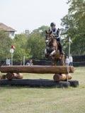 Hästryttare som hoppar över en barriär Arkivbild