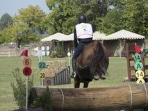 Hästryttare som hoppar över en barriär Arkivbilder