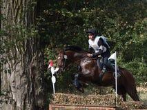 Hästryttare som hoppar över en barriär Arkivfoton