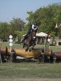 Hästryttare som hoppar över en barriär Fotografering för Bildbyråer
