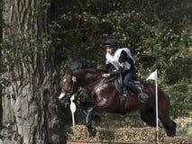 Hästryttare som hoppar över en barriär Royaltyfri Foto