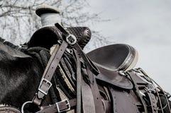 Hästsadel, läder, filt Arkivfoton