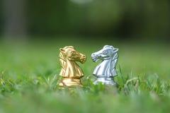 Hästschackstycken på sparat gräs royaltyfri bild