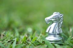 Hästschackstycken på sparat gräs arkivbild