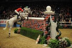 hästshow Fotografering för Bildbyråer