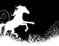 hästsilhouettehingst Arkivfoton
