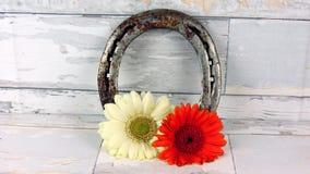 Hästsko med blommor Royaltyfria Bilder