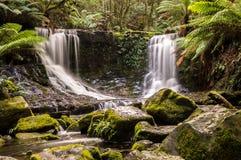 Hästskonedgångar, Mt Fältnationalpark, Tasmanien, Australien Royaltyfria Bilder