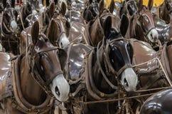 Hästskyltdockor Fotografering för Bildbyråer