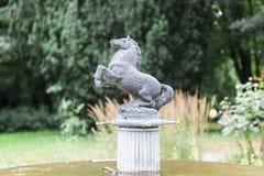 Hästspringbrunnen parkerar in med hästen fotografering för bildbyråer
