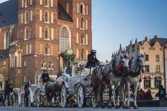 Hästtaxi i Krakow Arkivfoto