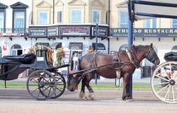 Hästtaxivagnar i Great Yarmouth Arkivbild
