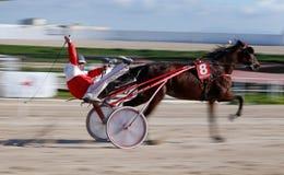 Hästtravsportvinnare, i att panorera för Palma de Mallorca kapplöpningsbana fotografering för bildbyråer
