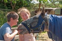 Hästunderhållning Arkivbild
