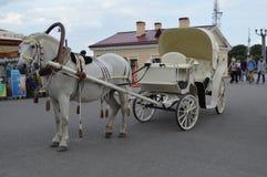 Hästvagn arkivfoton