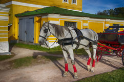 Hästvagn Arkivbild
