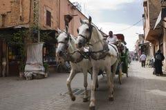 Hästvagn Royaltyfria Bilder