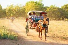 Hästvagn i Bagan, Myanmar Arkivfoto
