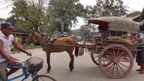 Hästvagn i Bagan, Myanmar arkivfilmer