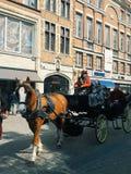 Hästvagn i den Bryssel gatan Royaltyfri Bild