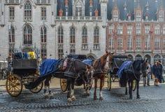 Hästvagn i den härliga Bruges staden, Belgien fotografering för bildbyråer