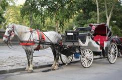 Hästvagn nära Central Park på den 59th gatan i Manhattan Royaltyfri Fotografi