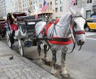 Hästvagn nära Central Park på den 59th gatan i Manhattan Arkivbild