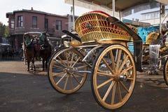 Hästvagn och hästar Fotografering för Bildbyråer