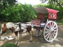 Hästvagn på Mysore Arkivbilder