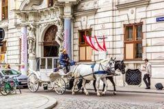 Hästvagn, populär turist- dragning i Wien arkivbilder