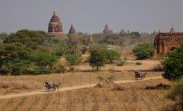 Hästvagnar med buddistiska tempel i Bagan, Myanmar Arkivfoto