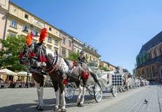 Hästvagnen för stadssight turnerar i Krakow Royaltyfri Fotografi