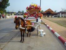 Hästvagnen i det Lampang landskapet Royaltyfria Bilder