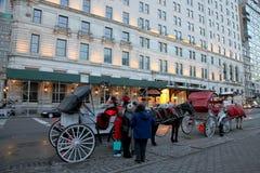 Hästvagnsritt i New York Arkivbild